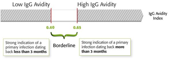 Toxoplasma IgG, IgM