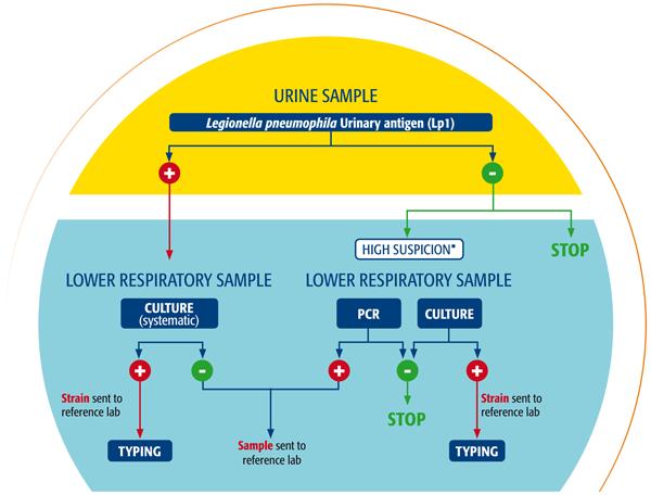 Suspicion of Legionella: diagnostic algorithm