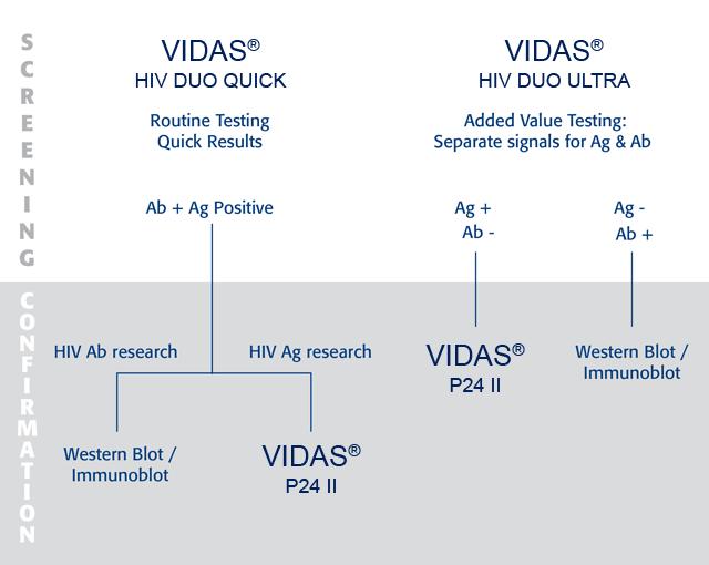 Vidas hiv panel 4th generation hiv screening biom rieux clinical diagnostics - Test hiv p24 periodo finestra ...